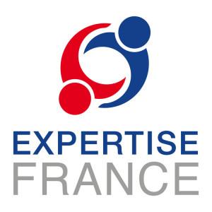 LOGO EXPERTISE FRANCE